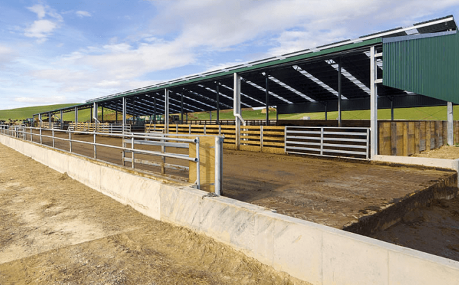 wintering sheds image 2 Dairy Barn Systems