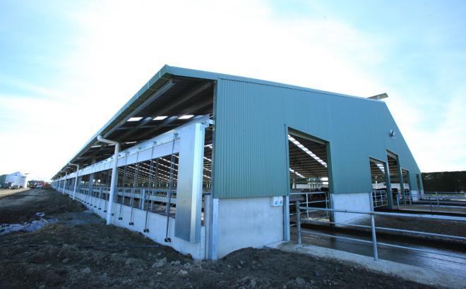 Craig Copland's Dairy Barn System to help improve dairy farming in new zealand