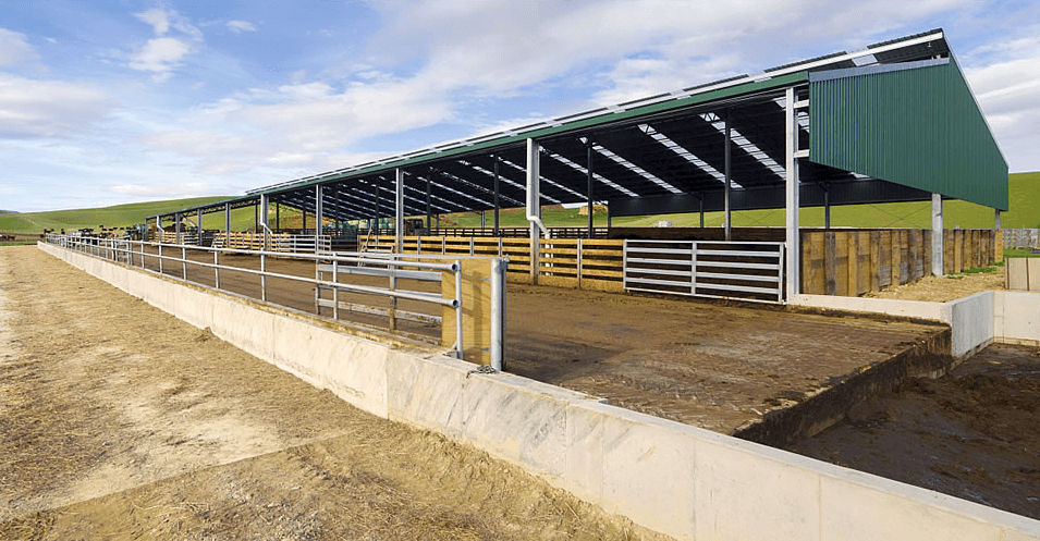 Dairy Shed & Barn Systems | Dairy Technology » Dairy Barn